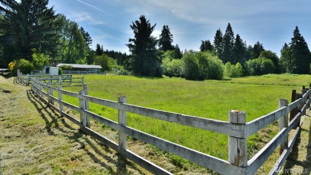 1251 NE Paulson Rd, Poulsbo, WA 98370 (#1138473) :: Ben Kinney Real Estate Team
