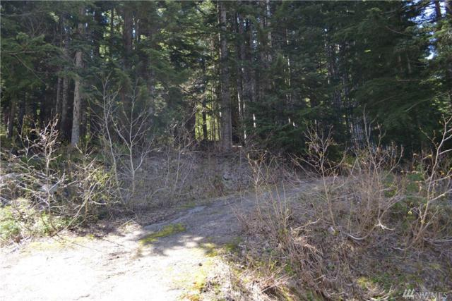 0-XXXX Innsbruck Dr, Snoqualmie Pass, WA 98068 (#1138972) :: Ben Kinney Real Estate Team