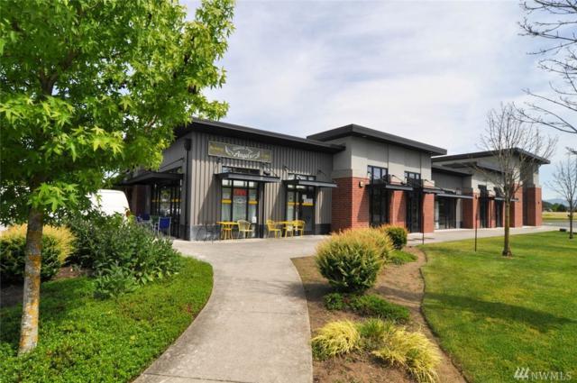4260 Cordata Pkwy, Bellingham, WA 98226 (#1139027) :: Ben Kinney Real Estate Team