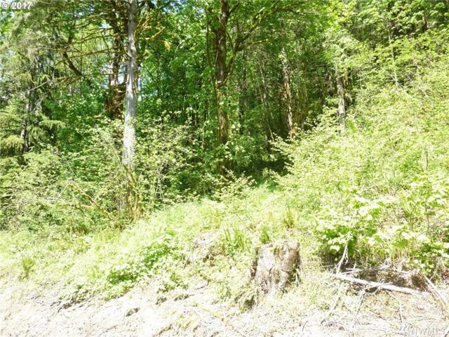 37405 NE Beaver Brook Rd, Amboy, WA 98601 (#1139330) :: Ben Kinney Real Estate Team
