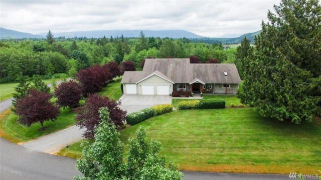 18784 Kim Place, Burlington, WA 98233 (#1139436) :: Ben Kinney Real Estate Team
