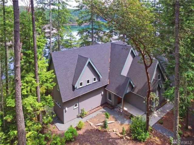 462 Bee Mill Rd, Brinnon, WA 98320 (#1139456) :: Ben Kinney Real Estate Team