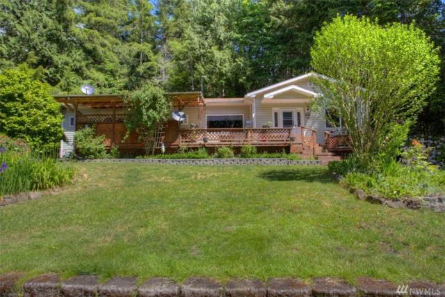 51 Point View Ave, Brinnon, WA 98320 (#1139621) :: Ben Kinney Real Estate Team