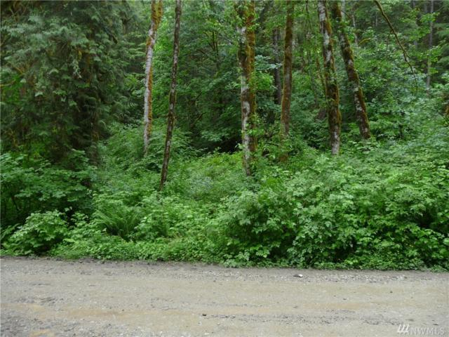 0 East Cascade Drive, Marblemount, WA 98267 (#1139655) :: Ben Kinney Real Estate Team