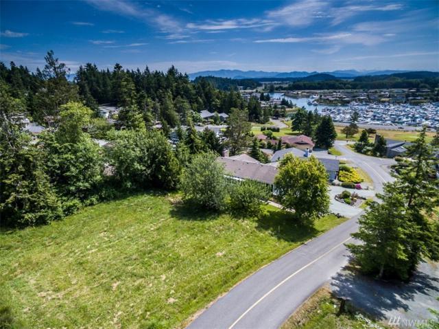 436 Klickitat Dr, La Conner, WA 98257 (#1139750) :: Ben Kinney Real Estate Team
