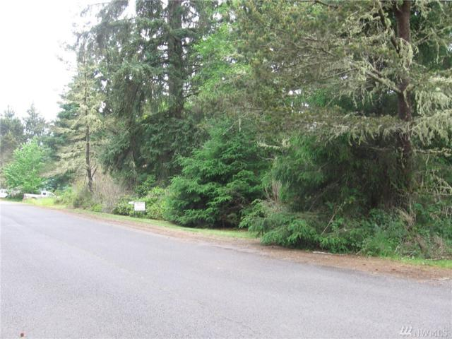 111 Douglas Dr, Oysterville, WA 98641 (#1139784) :: Ben Kinney Real Estate Team