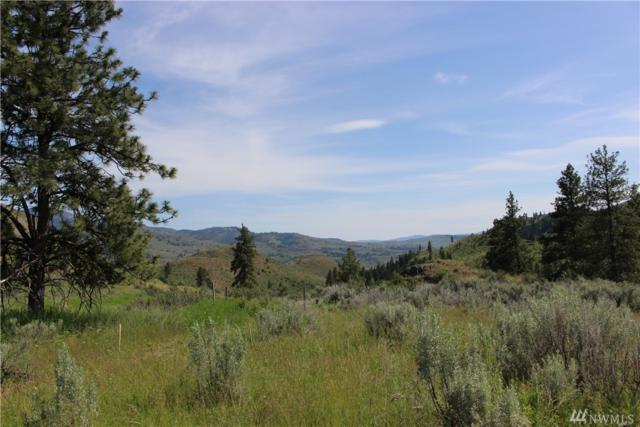 61 Doe Haven Dr, Twisp, WA 98856 (#1139803) :: Ben Kinney Real Estate Team