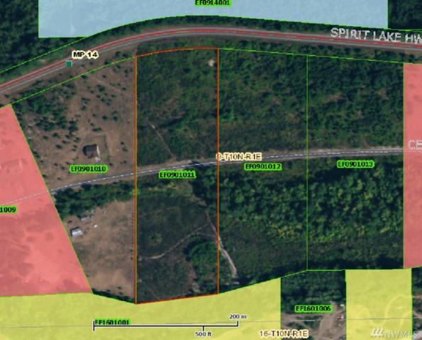 612 Centerfire Lane, Toutle, WA 98649 (#1140044) :: Ben Kinney Real Estate Team