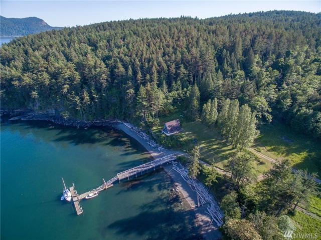 123 County Road, Waldron Island, WA 98297 (#1140163) :: Ben Kinney Real Estate Team