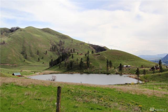 102 Bonner Lake Rd, Twisp, WA 98856 (#1140365) :: Brandon Nelson Partners