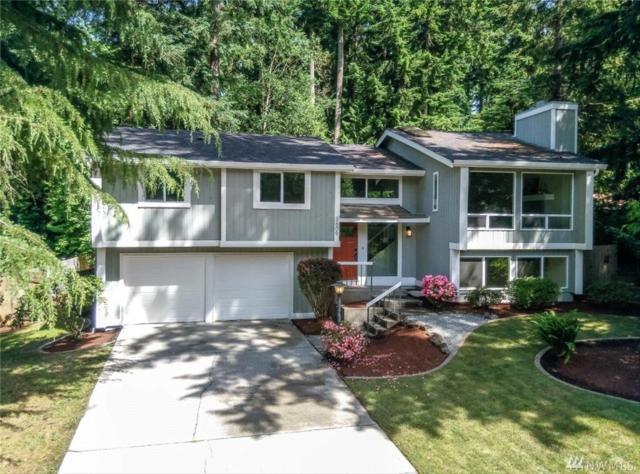 3609 13th Av Ct NW, Gig Harbor, WA 98335 (#1140456) :: Ben Kinney Real Estate Team