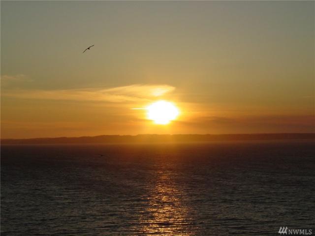 0 36Xxx Camano, Camano Island, WA 98282 (#1140625) :: Homes on the Sound