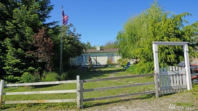 54 Holgerson Rd, Sequim, WA 98382 (#1140703) :: Ben Kinney Real Estate Team
