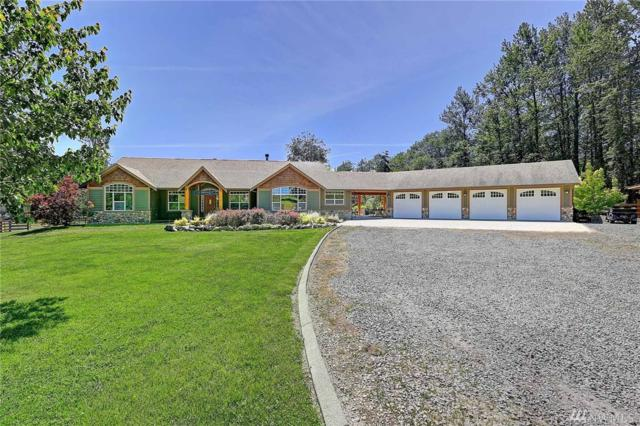 3602 300th St NW, Stanwood, WA 98292 (#1140824) :: Ben Kinney Real Estate Team