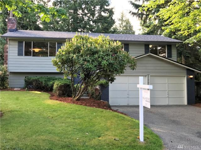 17613 24th Ave SE, Bothell, WA 98012 (#1140943) :: Ben Kinney Real Estate Team