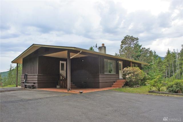 201 Mt Jupiter Rd, Brinnon, WA 98320 (#1141021) :: Ben Kinney Real Estate Team