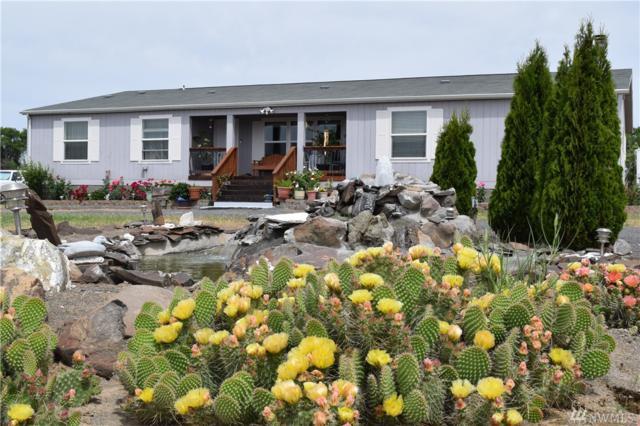 1170 Thomas Dr NE, Soap Lake, WA 98851 (#1141117) :: Ben Kinney Real Estate Team
