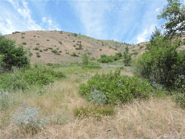 10650 Mud Creek Rd, Entiat, WA 98822 (#1141401) :: Ben Kinney Real Estate Team