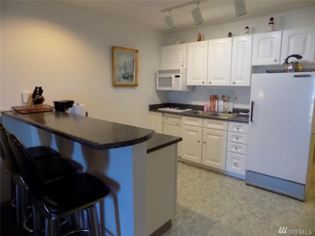 304 14th St NW #317, Long Beach, WA 98631 (#1141419) :: Ben Kinney Real Estate Team