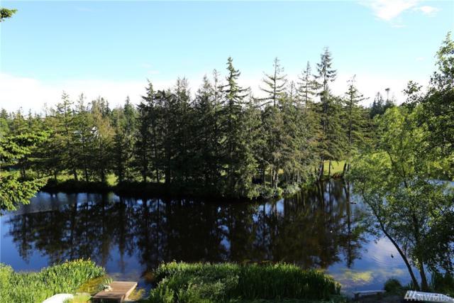 1875 Lake Dr, Camano Island, WA 98282 (#1141708) :: Ben Kinney Real Estate Team