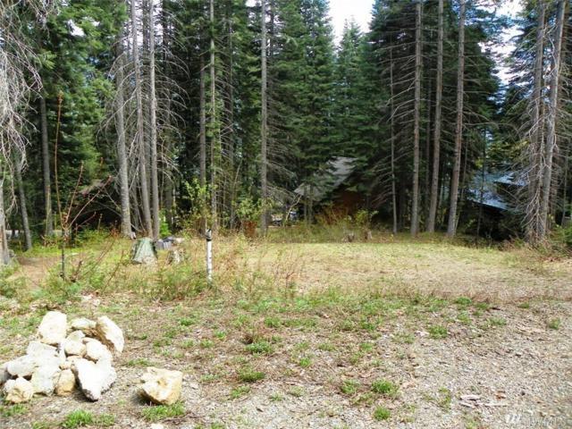 150 Mountain Home Lane, Easton, WA 98925 (#1142102) :: Ben Kinney Real Estate Team