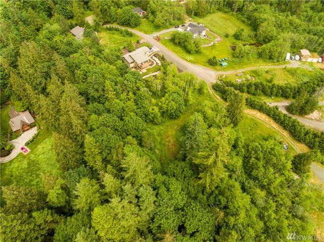 3443 Noahs Wy, Bellingham, WA 98226 (#1142333) :: Ben Kinney Real Estate Team