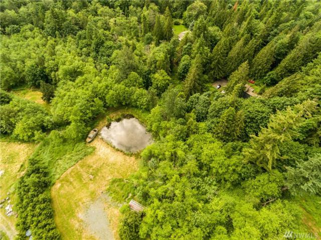 3437 Noahs Wy, Bellingham, WA 98226 (#1142386) :: Ben Kinney Real Estate Team