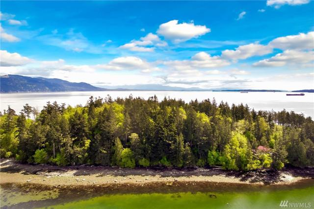 0 Lot 112 Eliza Island, Bellingham, WA 98226 (#1142485) :: Crutcher Dennis - My Puget Sound Homes