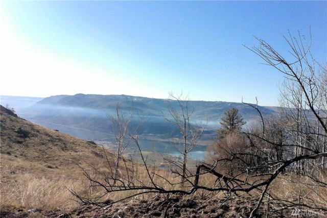 0-nna Goat Trail Rd, Brewster, WA 98812 (#1142544) :: Ben Kinney Real Estate Team
