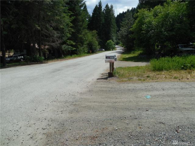 0 Hansel Lane, Peshastin, WA 98847 (#1142604) :: Ben Kinney Real Estate Team