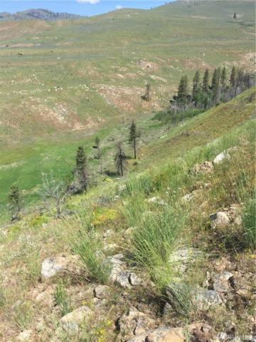 0 Indian Dan Canyon, Brewster, WA 98812 (#1142714) :: Ben Kinney Real Estate Team