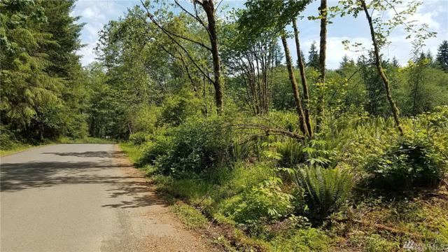 0 Furford Lane, Elma, WA 98541 (#1142743) :: Ben Kinney Real Estate Team