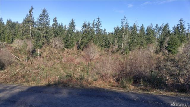 14 Lot 34 14Rh St Kps St KP, Lakebay, WA 98349 (#1142958) :: Ben Kinney Real Estate Team