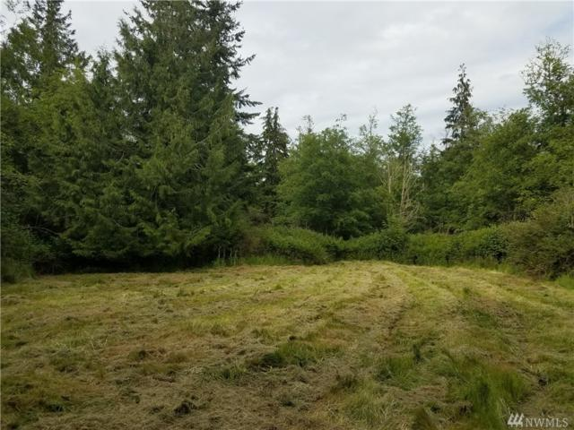 0 Goss Ridge Road, Freeland, WA 98249 (#1143173) :: Ben Kinney Real Estate Team