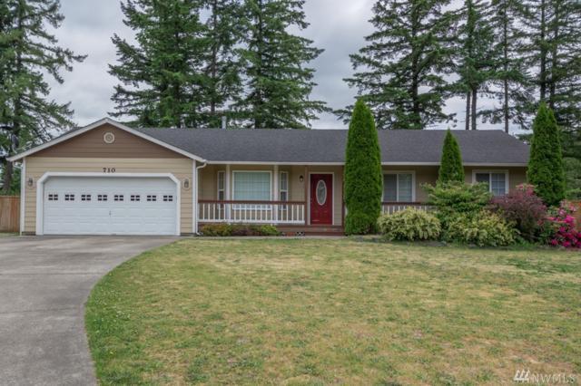 710 Golphnee Lp SE, Rainier, WA 98576 (#1143249) :: Ben Kinney Real Estate Team