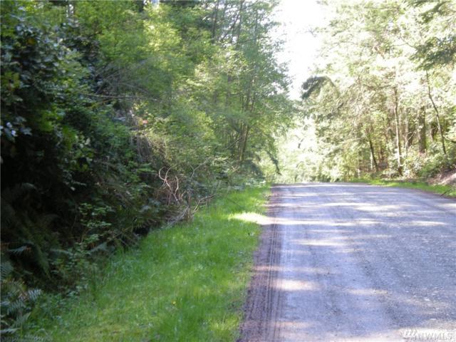 690 Pilchuck, Greenbank, WA 98253 (#1143284) :: Ben Kinney Real Estate Team