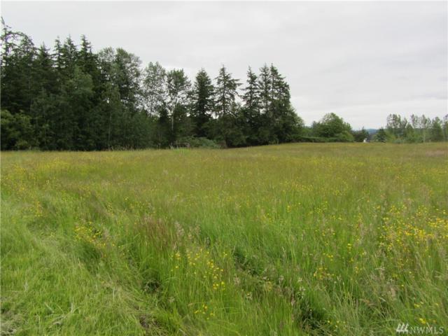 0 Yellow Brick Rd, Bellingham, WA 98226 (#1143393) :: Ben Kinney Real Estate Team