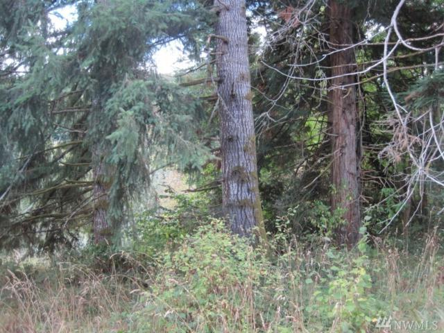 0-Lot 3&6 Harkum Rd, Pe Ell, WA 98572 (#1143403) :: Ben Kinney Real Estate Team