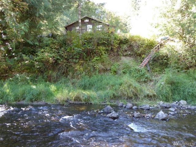 133 Branlander Rd, Morton, WA 98356 (#1143540) :: Ben Kinney Real Estate Team