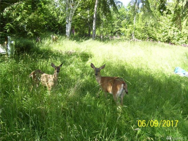 22418 Maple Dr KP, Lakebay, WA 98349 (#1143754) :: Tribeca NW Real Estate