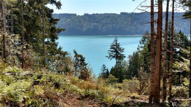 4 N Hwy 101, Hoodsport, WA 98548 (#1143837) :: Ben Kinney Real Estate Team