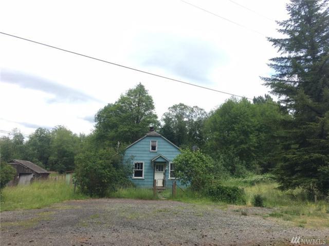 151 Fremont Ave, Quilcene, WA 98376 (#1143840) :: Ben Kinney Real Estate Team