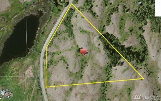 830 Pine Creek Rd, Tonasket, WA 98855 (#1143872) :: Ben Kinney Real Estate Team