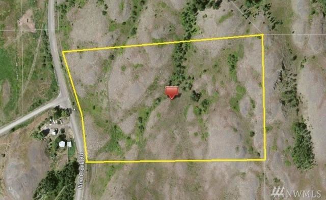 820 Pine Creek Rd, Tonasket, WA 98855 (#1143878) :: Ben Kinney Real Estate Team