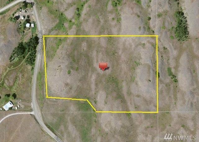 810 Pine Creek Rd, Tonasket, WA 98855 (#1143879) :: Ben Kinney Real Estate Team
