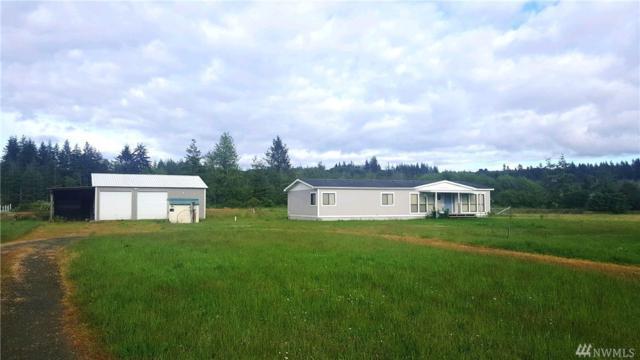 103 Heise Rd S, Elma, WA 98541 (#1144174) :: Ben Kinney Real Estate Team