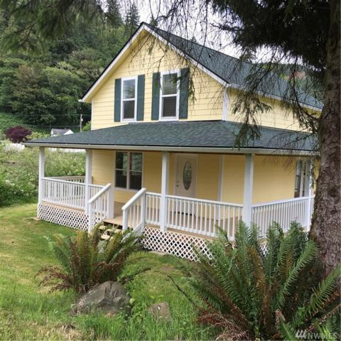 978 Steamboat Slough Rd, Skamokawa, WA 98647 (#1144226) :: Real Estate Solutions Group