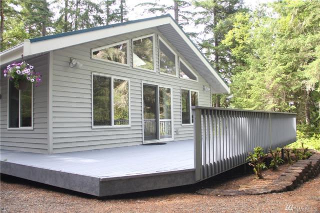 10720 Bass Place W, Anderson Island, WA 98303 (#1144395) :: Ben Kinney Real Estate Team