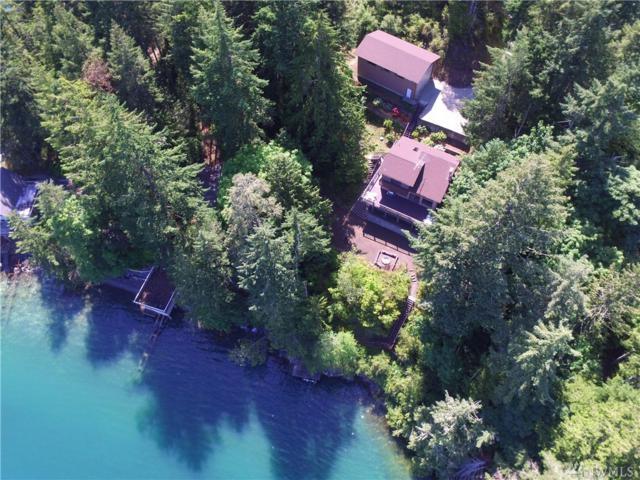 101 Mcdonald Cove Rd, Brinnon, WA 98320 (#1144478) :: Ben Kinney Real Estate Team