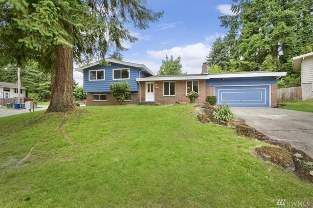 505 147th Place NE, Bellevue, WA 98007 (#1144581) :: Ben Kinney Real Estate Team